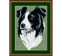 Border Collie Tapestry Kit - T1956