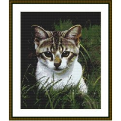 Cats and Dogs Charts by Celtic Rose