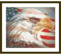American Eagle - Chart or Kit