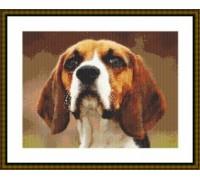 Beagle Alert - Chart or Kit