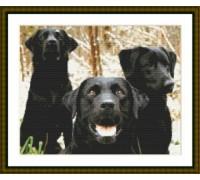 Black Labrador Trio - Chart or Kit