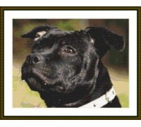 Black Staffordshire Bull Terrier - Chart or Kit