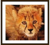 Cheetah Cub - Chart or Kit