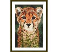 Cheetah Cub - Kit or Chart