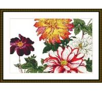 Chrysanthemums Chart or Kit