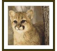 Cougar Cub - Chart or Kit