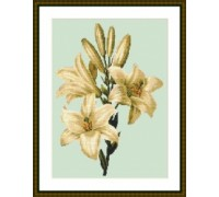 Cream Lilies - Chart or Kit