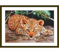 Leopard Cub - Chart or Kit