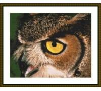 Owl Eye - Chart or Kit