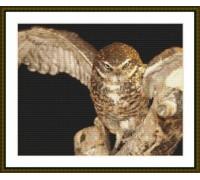 Owl in Flight - Chart or Kit