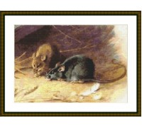 Rats - Chart or Kit