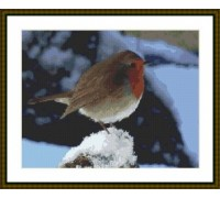 Robin in the Snow - Chart or Kit