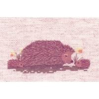 Hedgehog and Babies - CS504