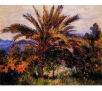 Palm Tree in Bordighera - Chart or Kit
