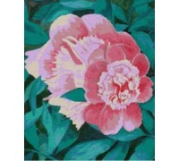 Peonies - Chart or Kit