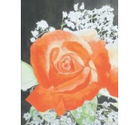 Rose Redux - Chart or Kit