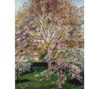 Walnuts and Apple Trees - PIS-05