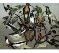 Hummingbirds Chart or Kit