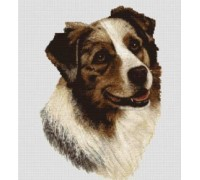 Australian Shepherd Chart or Kit