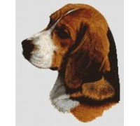 Beagle Chart or Kit