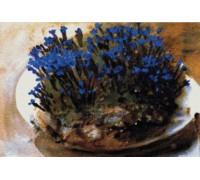 Blue Gentians Chart or Kit