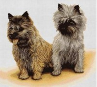 Cairn Terriers Chart or Kit