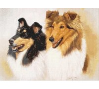 Collies Chart or Kit