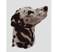 Dalmation Chart or Kit