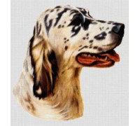 English Setter Chart or Kit