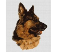 German Shepherd Chart or Kit