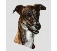 Greyhound Chart or Kit