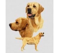 Labradors Chart or Kit