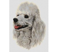 Poodle, White Chart or Kit