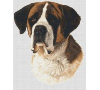 Saint Bernard Chart or Kit
