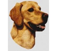 Yellow Labrador Chart or Kit