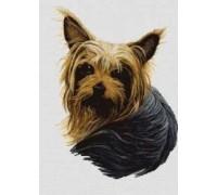 Yorkshire Terrier II Chart or Kit