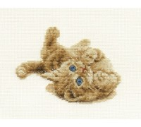 Kitten Playing - BK904