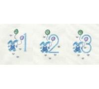 Boy's Birthday Card 123 - CGD19