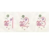 Girl's Birthday Card Kit 123 - CDG20