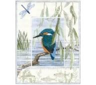 Wildlife by Derwentwater