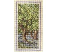 Woodland - Summer
