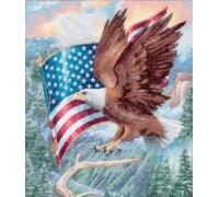 Flight of Freedom - 35077
