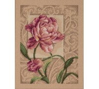 Graceful Tulip - D35239