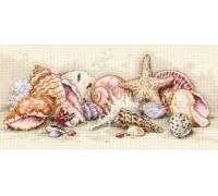 Seashell Treasures - 65035 - 18ct
