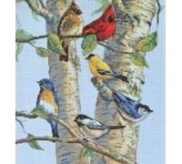 Birch Tree Birds - D35252