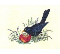 Blackbird and Apple - 12-983C - 26ct