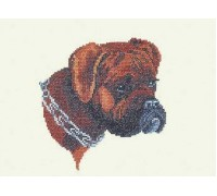 Boxer Dog Portrait - 12-682C - 26ct