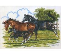 Galloping Home - 12-473E - 19ct