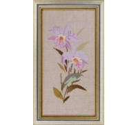 Lilac Orchid Study - 14-464B - 30ct