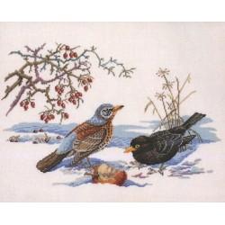 Birds By Eva Rosenstand